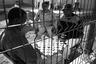 detentionyard_spain_border_ceti_melilla_1207_BW_small